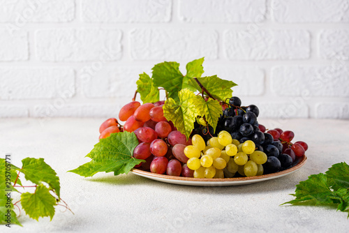 Assortment of different sort of grapes Canvas