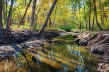 Small River In The Sunny Autum...