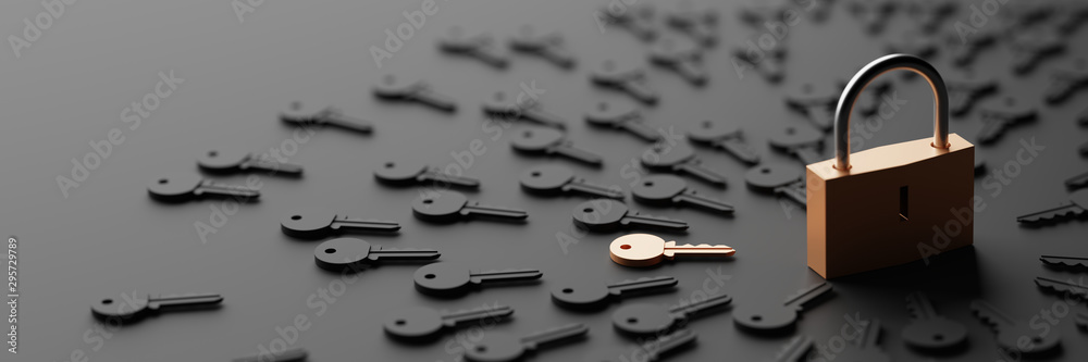 Fototapety, obrazy: Padlock with infinite keys, metaphor of problems, solutions  and risk management; original 3d rendering