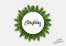 Celebrate Christmas Green Fir ...