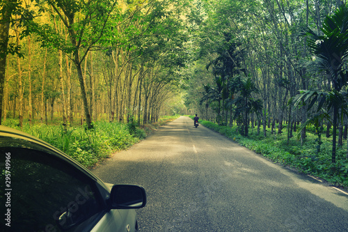Fototapeta  car and motocycle travel on  green rubber plantation pathway  in