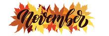 November, Vector Script With D...