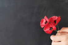 Hand Holding Red Poppy Flowers, Remembrance Day,  Veterans Day, Anzac Day, Lest We Forget Concept