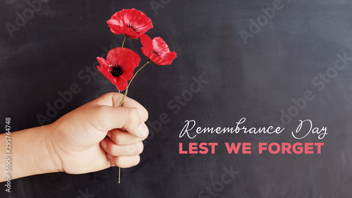 Fotografiet Hand holding red poppy flowers, remembrance day,  Veterans day, Anzac day, lest