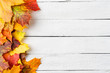 Colourful autumn leaves on white wooden background with copyspace. Fall concept. Top view