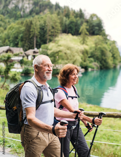 Photographie  Senior pensioner couple with nordic walking poles hiking in nature, talking