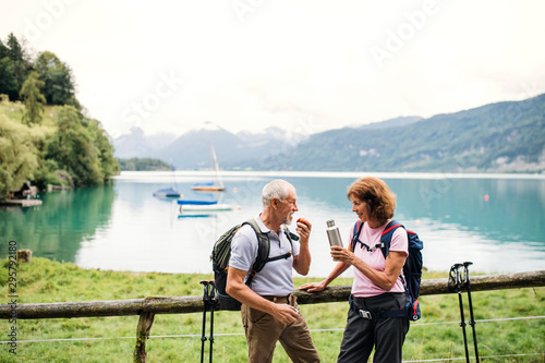 Fotografía  Senior pensioner couple with nordic walking poles hiking in nature, resting
