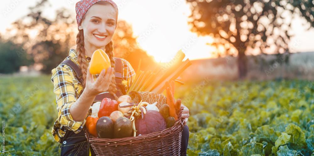 Fototapeta Farmer woman selling colorful and healthy vegetables
