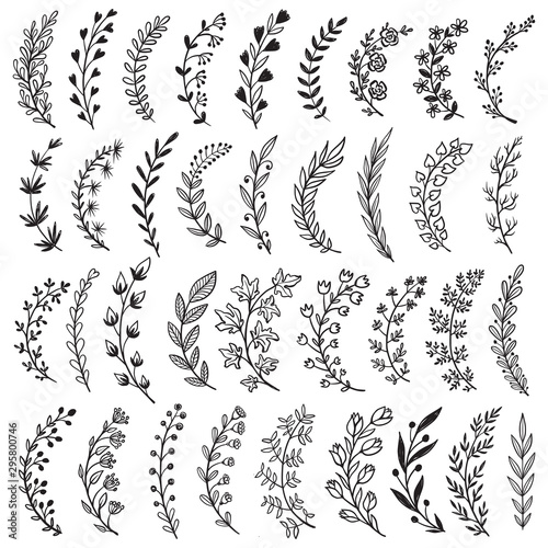 Leinwand Poster  Big set of hand drawn vector plants and branches with leaves, flowers, berries