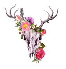 Deer Animal Skull With Flowers...