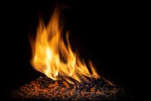 Burning Wood Pellets, Living Flame