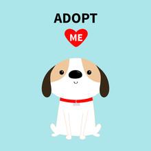Adopt Me. Dog Sitting. Red Col...