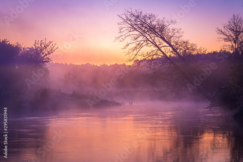 Montage in der Fensternische Lachs Leaning trees over river in fog during sunrise