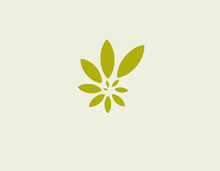 Bright Green Logo Leaves Of The Plant In A Spiral Pattern For The Company