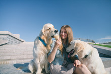 A Young Girl Feeds Her Dogs Ice Cream In A Park On A Hot Summer Day.