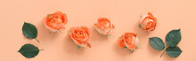 Coral Roses With Leaves On A P...