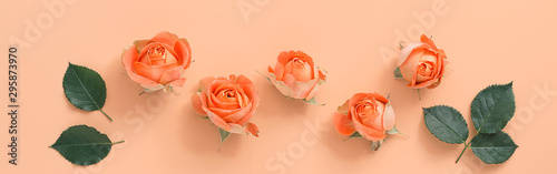 Fotomural  Coral roses with leaves on a pastel pink background, border