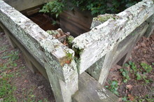 Worn Or Weathered Wood With Mo...