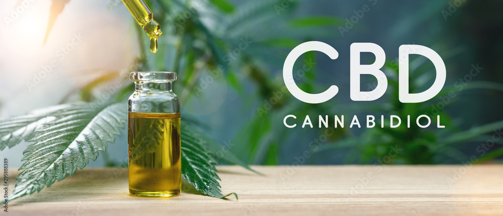 Fototapety, obrazy: Cannabis CBD oil extracts in jars herb and leaves. Concept medical marijuana