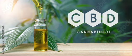 Foto op Canvas Londen CBD droplet dosing a biological and ecological hemp plant herbal pharmaceutical cbd oil from a jar. Concept of herbal alternative medicine, cbd oil, pharmaceutical industry