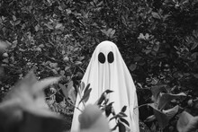 Ghost Covered With A White Ghost Sheet On A Forest. Halloween Concept