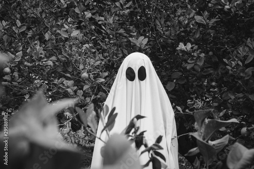 Fotografija Ghost covered with a white ghost sheet on a forest