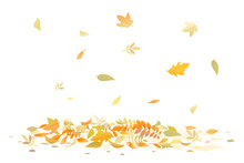 Autumn Leaves Fallen Down On Ground Isolated Illustration, Multicolored Dry Leaves Fall On Pile, Surface Is Covered With Leaves
