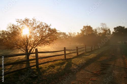 Foto op Plexiglas Weide, Moeras Rural Sunrise