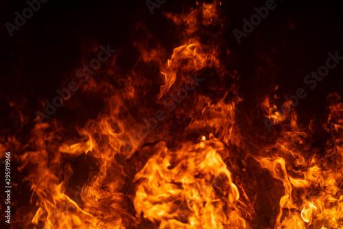 Keuken foto achterwand Vuur Close up hot fire flame burning glowing on black dark background
