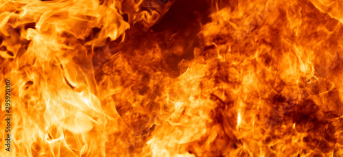 Papiers peints Feu, Flamme Close up hot fire flame burning glowing on black dark background