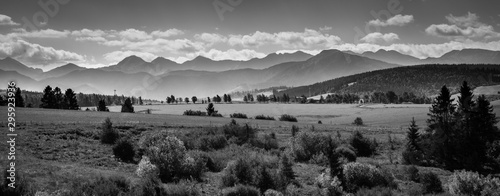 Misty Tatra Mountains - black and white panorama Canvas Print