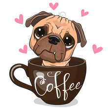 Cartoon Pug Dog Is Sitting In A Cup Of Coffee