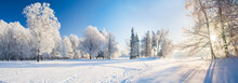 Panorama Of Beautiful Winter P...