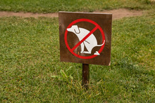 Fence With Sign Dogs Fouling P...