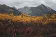 Snow covered Mountain Peaks and Yellow leafs