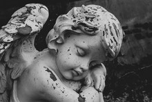 Closeup Of Sleeping Putto Or Child Angel Figurine On A Grave, Black And White Image, Horizontal, Copy Space For Text
