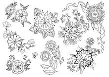 A Set Of Flowers. Vector Illus...
