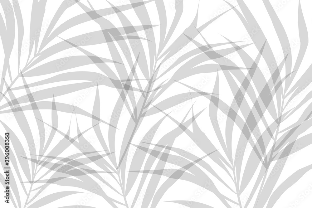 Fototapeta Vector composition of grey alpha transparent stylized leaves on a white background