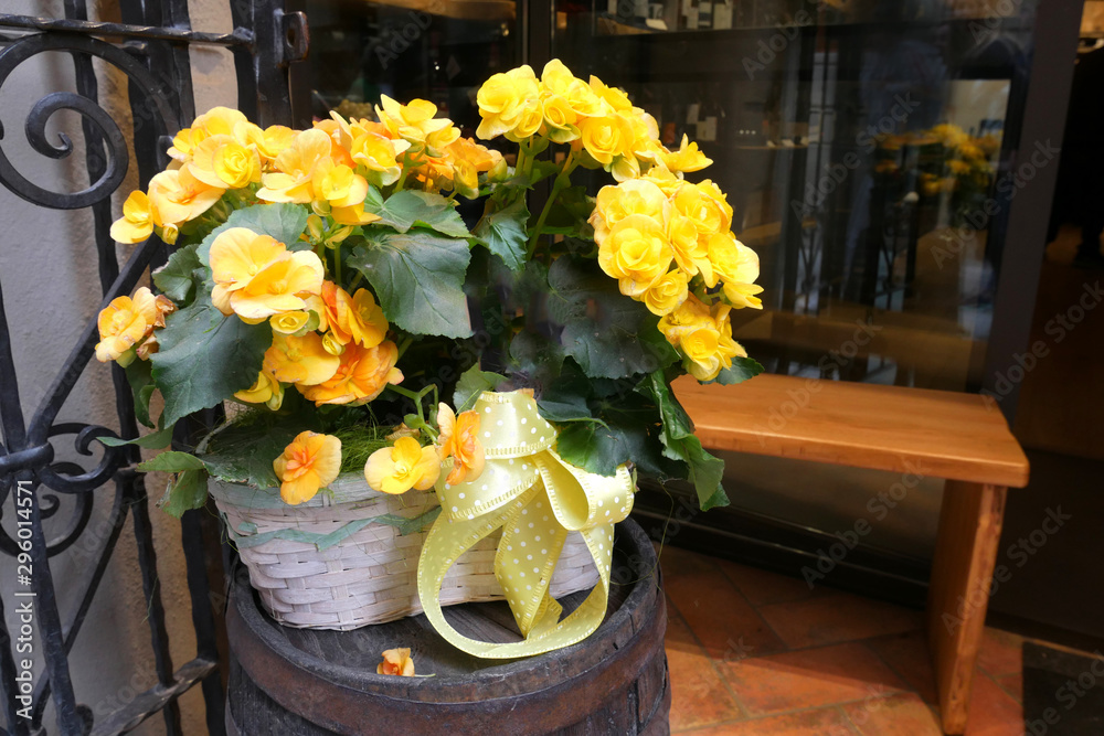 Bouquet of flowers decorate a mediterranean houses, Italy, Montepulciano, Tuscany