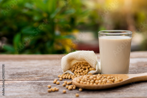 Closeup soy bean in sack and white cup of soy milk with green nature background Fototapet