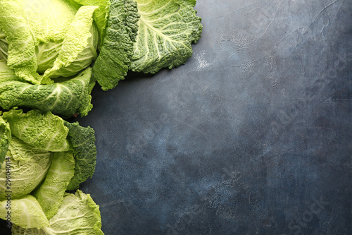 Obraz Fresh savoy cabbage on dark background - fototapety do salonu