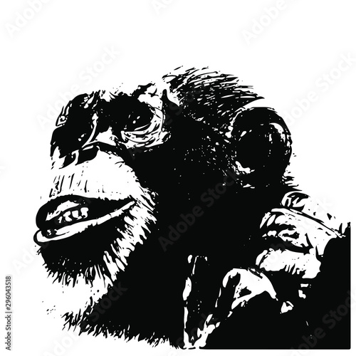 Spoed Foto op Canvas Aquarel Schedel Hand drawn Monkey. Natural colors. Illustration. Isolated on white background