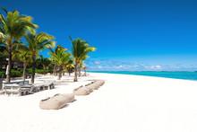Tropical Scenery - Beautiful B...