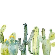 Watercolor Cactus Arrangements.