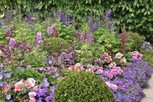 Beautiful pastel cottage garden flowers in the English summer border Poster Mural XXL