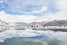 LEH LADAKH, INDIA - JUN19, 2018: Reflections Of High Mountain With White Cloud And Blue Sky On The Pagong Lake, Leh Ladakh, India.