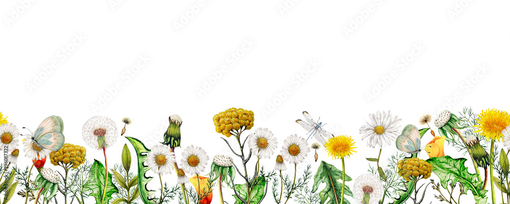 Fototapety, obrazy: Watercolor seamless banner of garden wildflowers,Seamless floral border