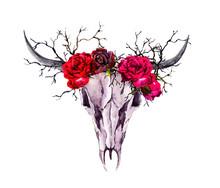 Buffalo Animal Skull, Red Rose...