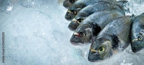Fotografie, Obraz  fresh dorado fish on ice at seafood market. copy space