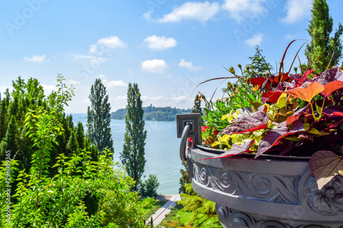 Flower bunch in front of beautiful landscape Lake Constance, isle of Mainau